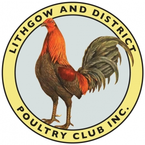 Lithgow & District Poultry Club