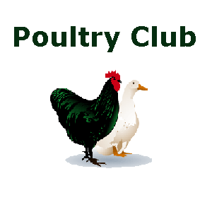 Blackall Poultry & Cages Birds Club