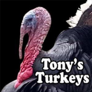 Tonys Turkeys
