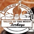 Turkey poults from Valley of the Moon Turkeys