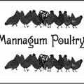 A+ Mannagum Poultry