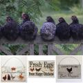 Chicken, Rooster Coop Signs & Homewares