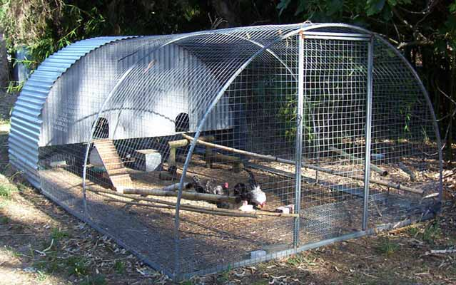 Backyard Poultry Information Centre Australia